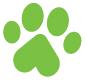 UA*NOBLE BIG CATS 🐈